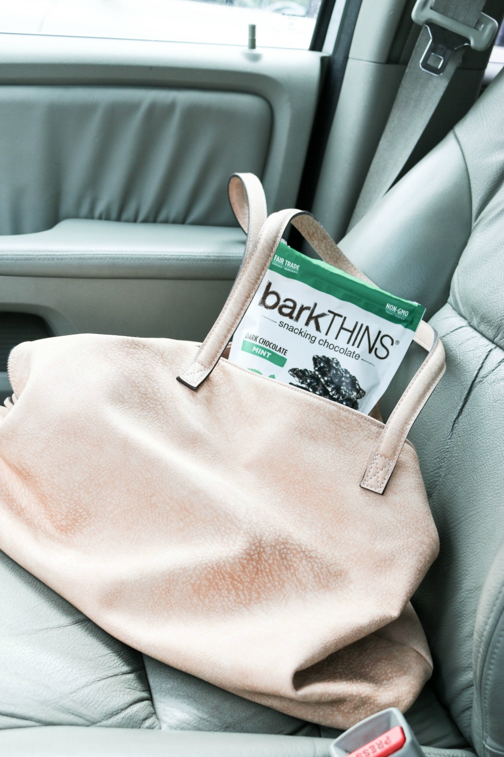 On=the-go snack | barkTHINS