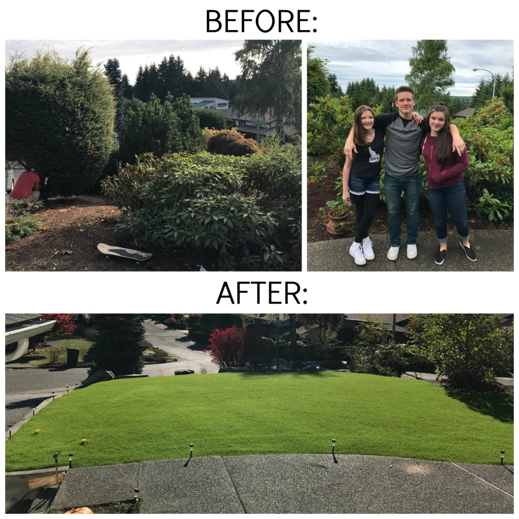 Front yard overhaul before and after | jennyonthespot.com